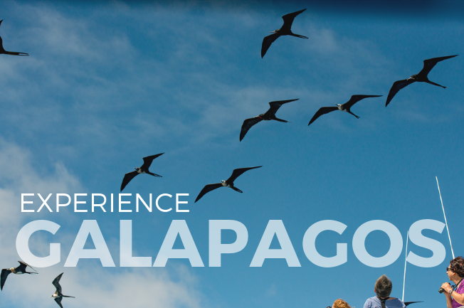 Galapagos Islands Yacht Adventure