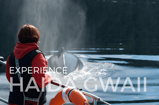 Haida Gwaii Sailing Adventure