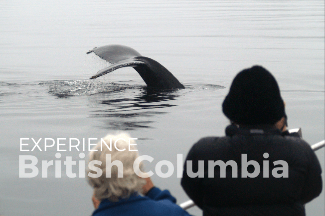 Northern Vancouver Island Sailing Adventure