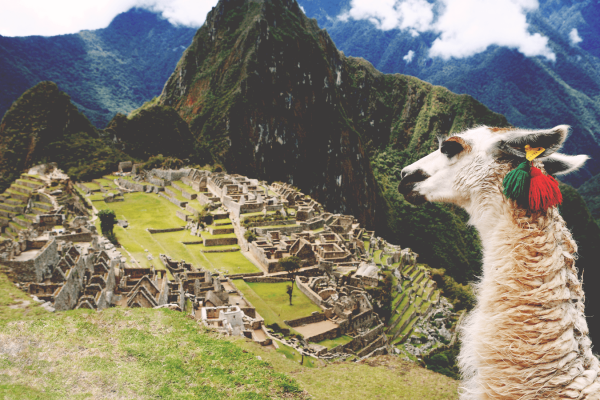 Inca Trail Trek to Machu Picchu