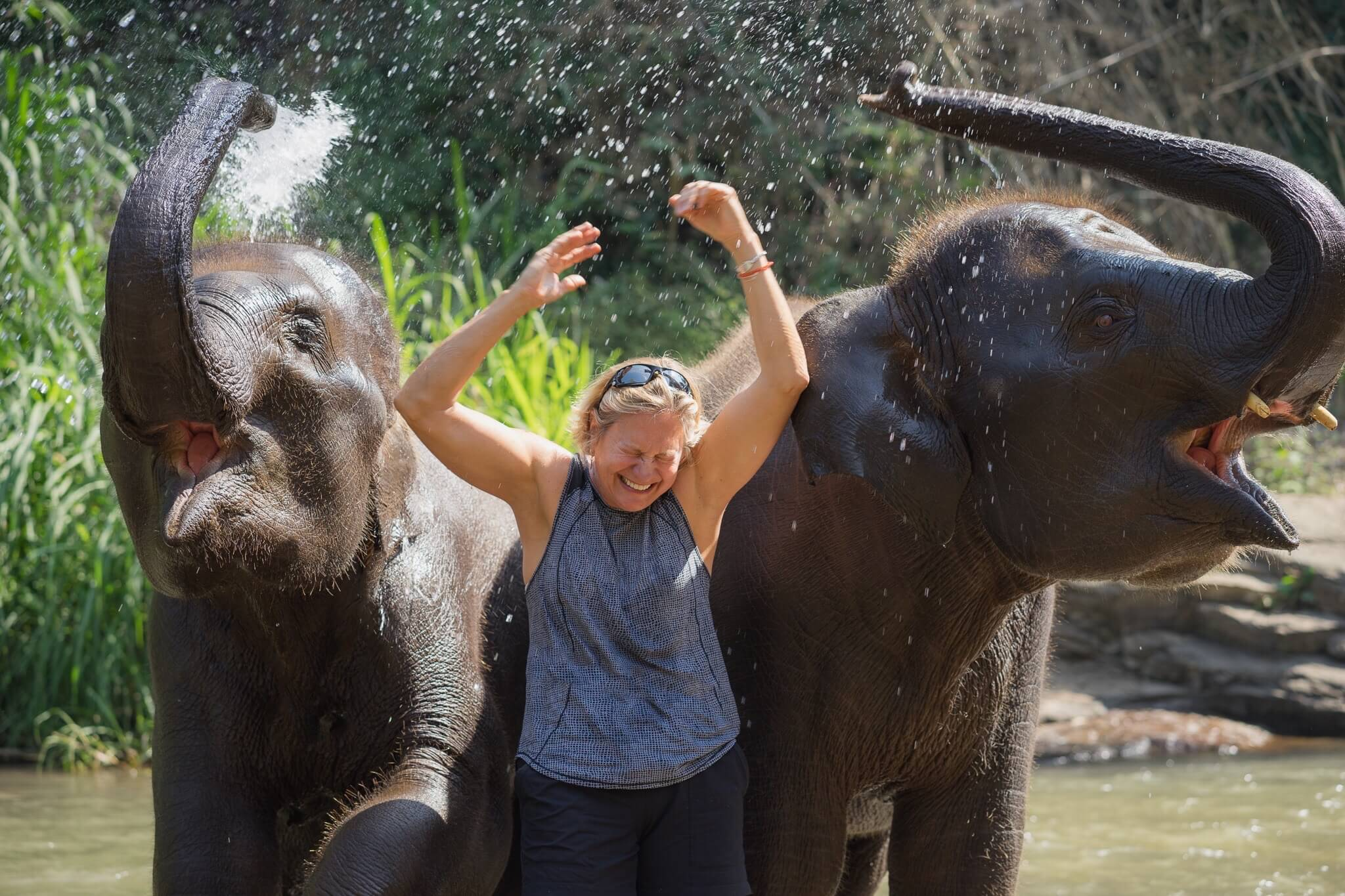 Earth Day, Protecting the Elephants In Thailand