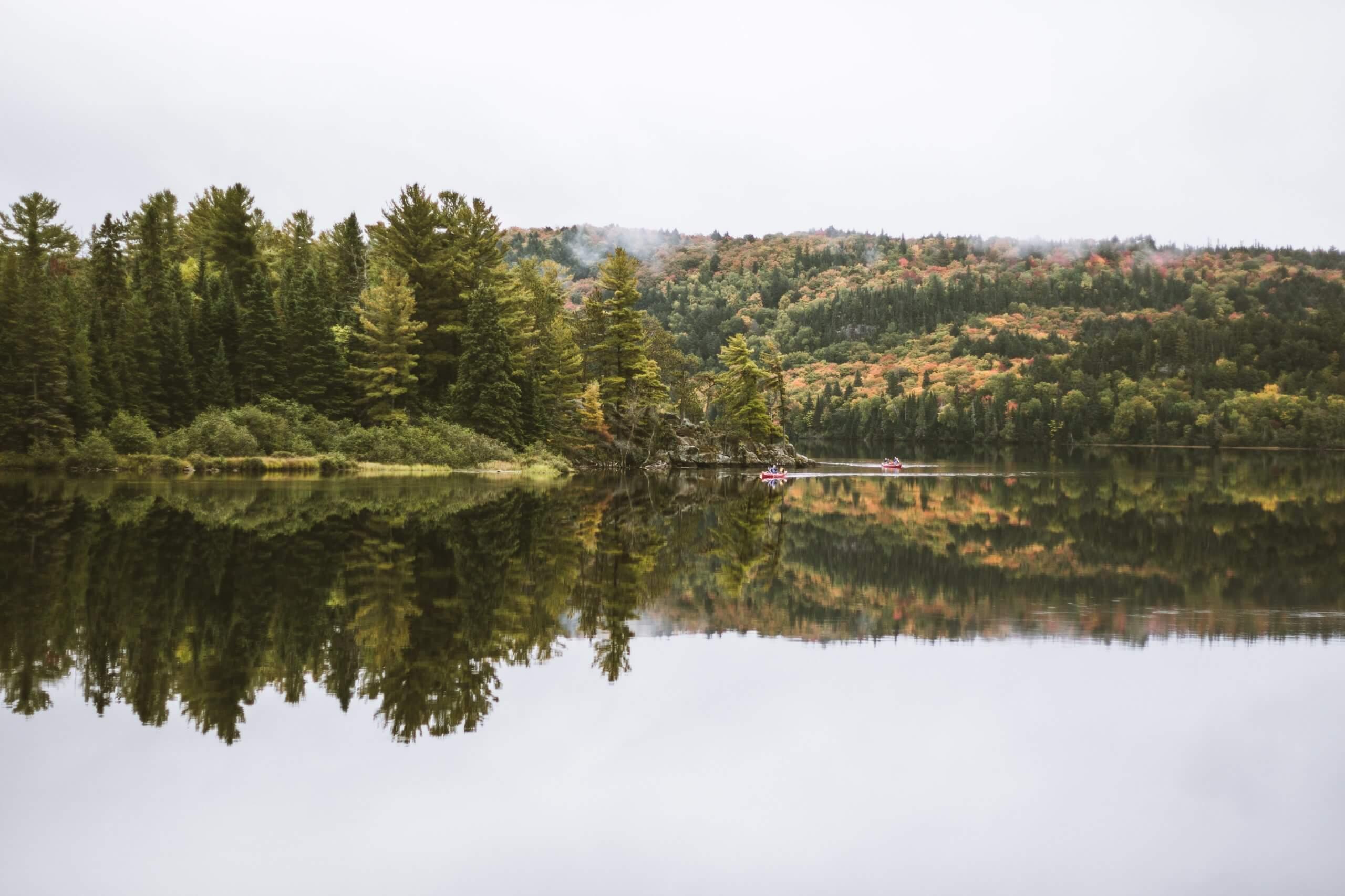 Alogonquin Park, Ontario